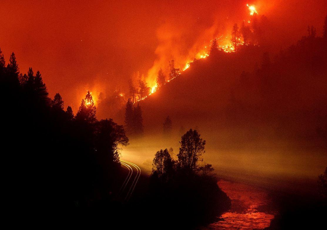Fire refugia