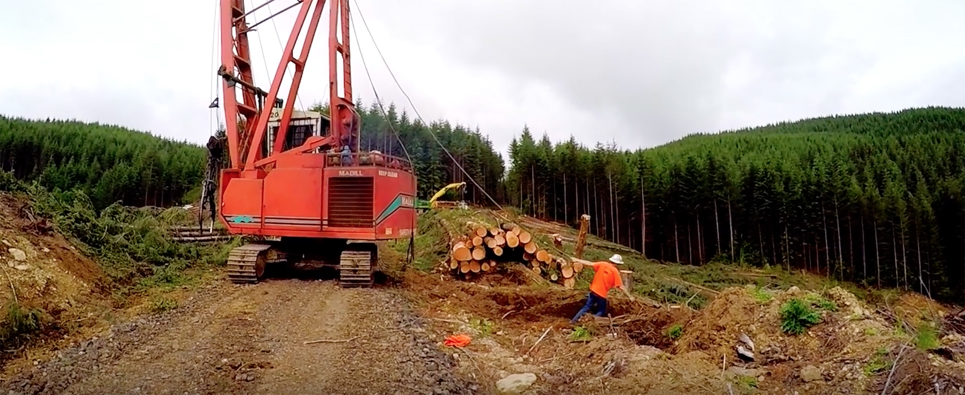 forest engineering